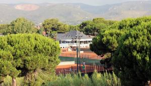 Tenis Gimeno